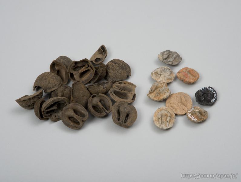 三内丸山遺跡 クルミとクルミ押圧土製品