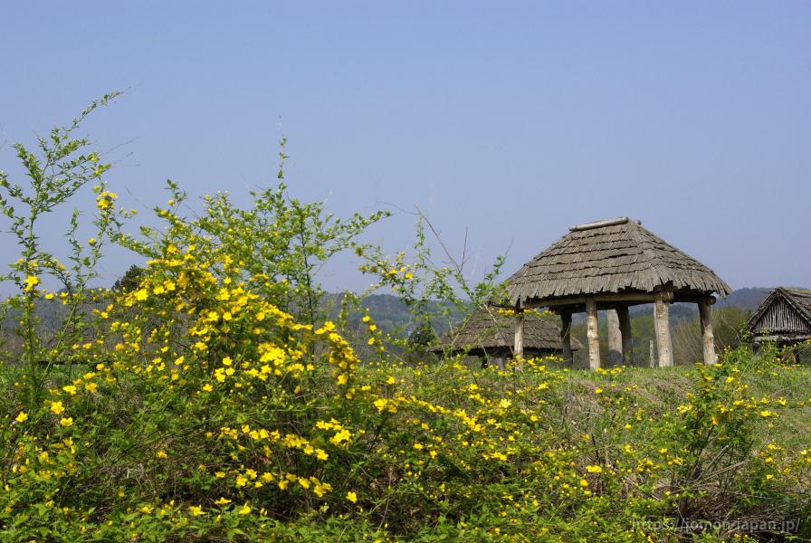 御所野遺跡 春の風景