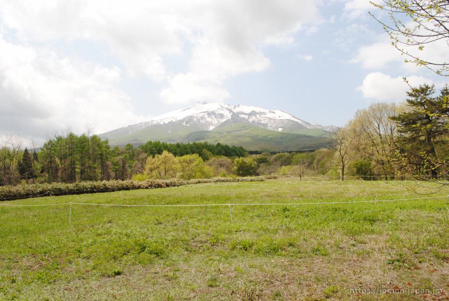 大森勝山遺跡 岩木山を望む(環状列石整備前)