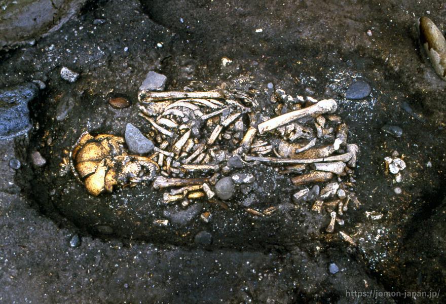 高砂貝塚 縄文時代後期の土坑墓