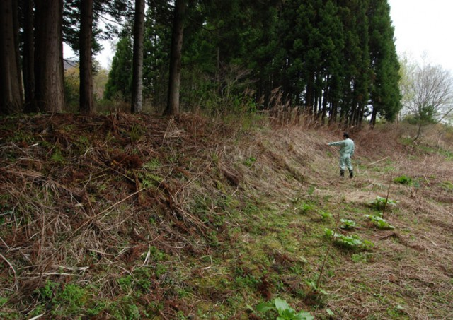 Current situation of the earthwork mound, Kakinoshima Site
