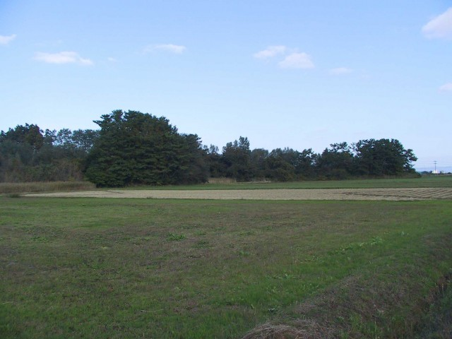 Distant view of the Tagoyano Shell Midden