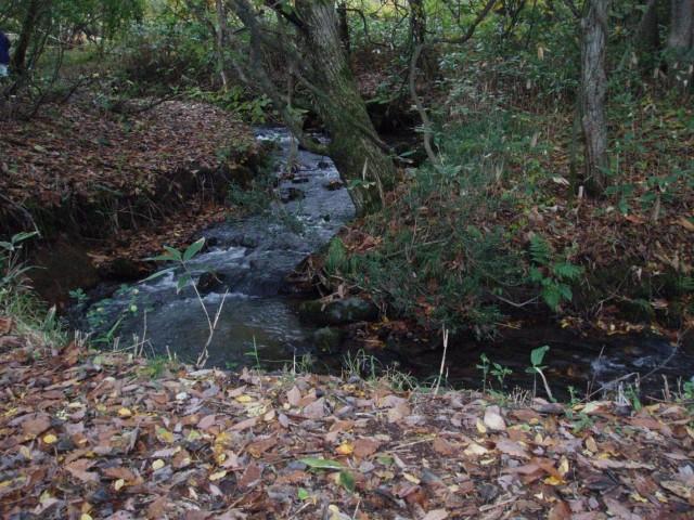 Omori River