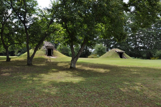 Chestnut trees and pit dwellings with a soil roof