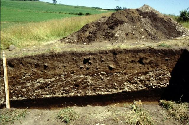 発掘中の貝塚