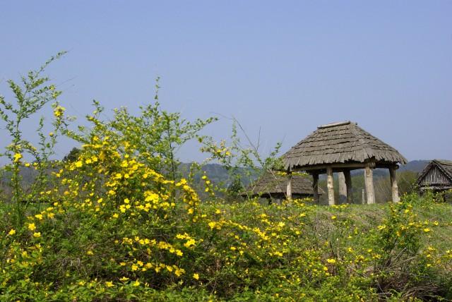 御所野縄文公園(春)